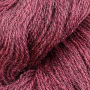 2137-stovet-rosa