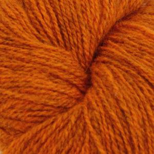 Ask -  Hifa 2, melert oransje
